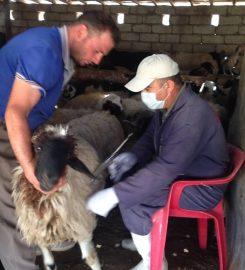 Duhok Veterinary Directorate